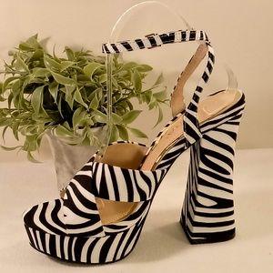 Roscoe-1  Zebra